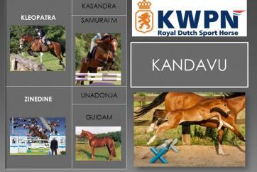Kandavu (2014)