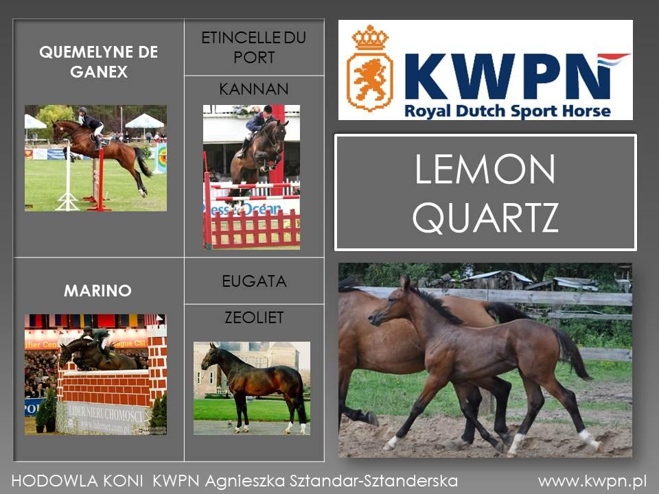 8. Lemon Quartz