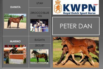 16. Peter Dan